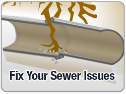 Solve Your Sewer Line Issues